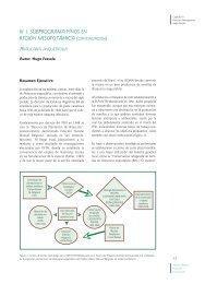 III. I. Subprograma Pinos en Región Mesopotámica (Continuación)