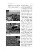 Unterwasserarchäologie zu Fuß - Seite 4