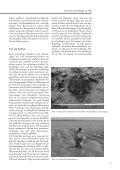 Unterwasserarchäologie zu Fuß - Seite 7