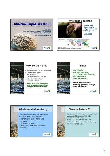 Abalone Herpes Like Virus - OIE Africa