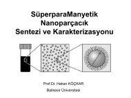 Manyetik Nanoparçacık Sentezi Ve Karakterizasyonu