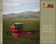 MF WR Series Windrowers Brochure - Hesston.com