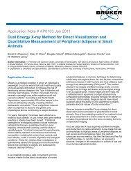 AP0103 - Measurement of Peripheral Adipose in Small ... - Bruker