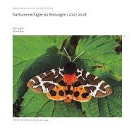 Nattsommerfugler på Revtangen i 2007-2008 - Museum Stavanger