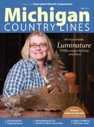 You - Michigan Country Lines Magazine