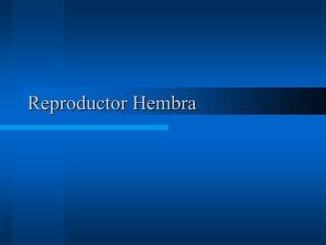 C8 Reproductor Hembra1.pdf