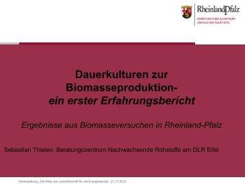Dauerkulturen Biomasse
