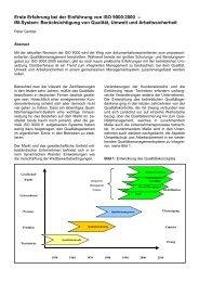 Erste Erfahrung bei der Einführung von ISO 9000 ... - Gerster-gec.com