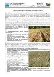 Kopfbogen für LFB - LMS Landwirtschaftsberatung Mecklenburg ...
