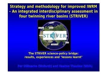 STRIVER - Niva