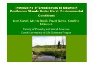 Reintroducing Native Broadleaves to Mountain Coniferous Stands ...