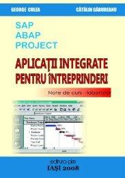 Aplicatii integrate pentru intreprinderi - PIM Copy