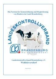 Das System der Kennzeichnung und Registrierung von Rindern im ...