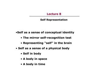 Lecture 8 •Self as a sense of conceptual identity • The mirror self ...