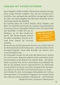 "Ratgeber ""Pestizide aus dem Supermarkt"" - Greenpeace - Seite 3"