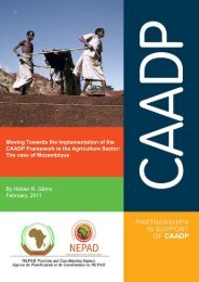 Moving Towards the Implementation of the CAADP Framework in ...