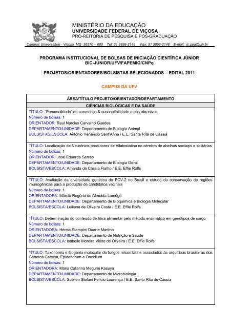 RESULTADO FINAL BOLSA DE INICIAÇÃO CIENTÍFICA ... - DTI - UFV
