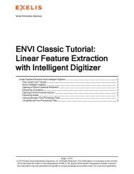 ENVI Classic Linear Feature Extraction with Intelligent ... - Exelis VIS