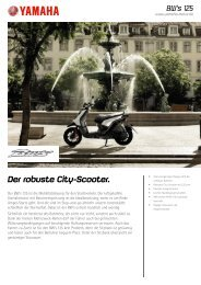 Der robuste City-Scooter.
