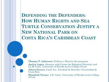 how human rights and sea turtle conservation justify a new national ...