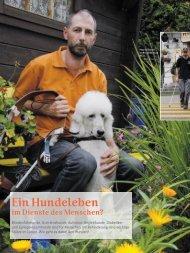 Hundeleben im Dienste des Menschen - Schweizer Hunde Magazin