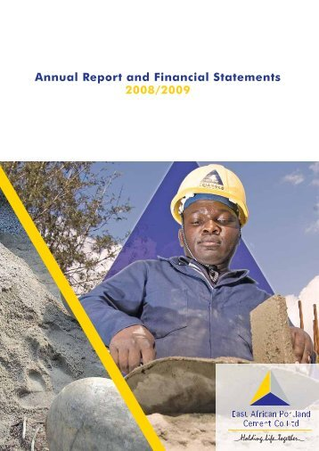 notes to the financial statements for the year ... - Investing In Africa