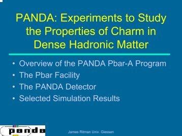 PANDA: An Experiment to