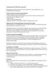 Bilaga 3 Anteckningar från workshop 6 september