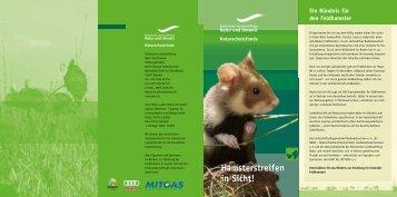 Faltblatt Hamster - Hamsterschutz in Sachsen