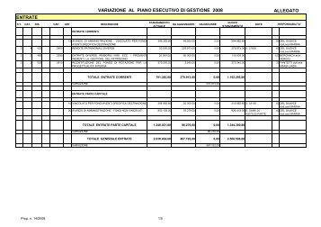 variazione al piano esecutivo di gestione 2008 allegato entrate