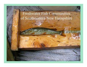 Native Fish Communities of Southeastern New Hampshire
