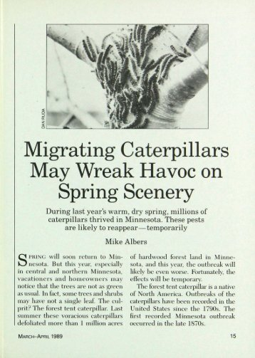 Migrating Caterpillars May Wreak Havoc on Spring ... - webapps8