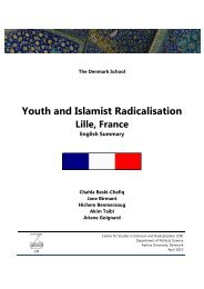 Youth and Islamist Radicalisation - Lille, France - English Summary