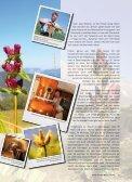 Wurzel- behandlung - Wandermagazin - Seite 2