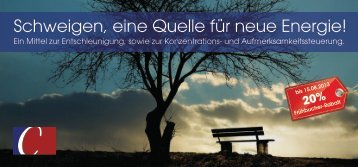 Flyer zum Schweige-Retreat. - Pro Mental Coaching