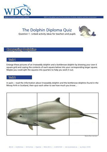 Linked activity for Q1.pdf - Whale and Dolphin Conservation Society