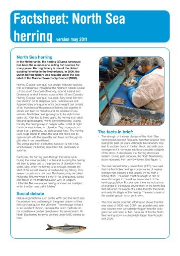 Factsheet: North Sea herring version may 2011