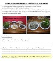 Le début du développement d'un végétal : la ... - Pass Education