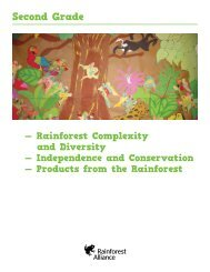 All Second Grade Lessons & Standards as a PDF - Rainforest Alliance