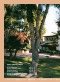 +++ Classico +++ Savona +++ Avena +++ Alessa +++ Ventana +++ ... - Seite 2
