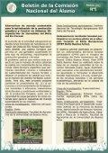 Boletín N°5 - Page 4