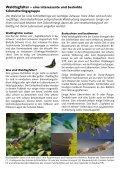Waldtagfalter im Wald - naturschutz.ch, Natur - Page 2