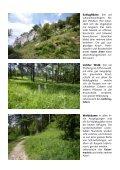 Waldtagfalter im Wald - naturschutz.ch, Natur - Page 7