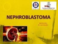 Nephroblastoma - SACCSG 2011 - Dr J van Heerden
