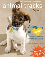 of A legacy - Animal Humane Society