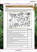 Schimpansen Affen im Regenwald - Sufino.de - dein Freizeitland - Seite 2