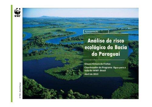 Análise de risco ecológico da Bacia do Paraguai do Paraguai