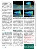 Eine heiße Spur - warum Forscher Vulkane anbohren - Scinexx - Seite 4
