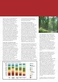 Bauen mit Holz - zukunftsregion - Seite 4