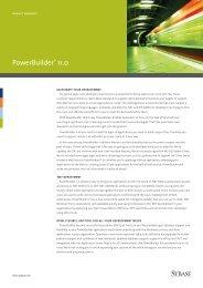 PowerBuilder® 11.0 datasheet